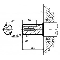 Двигатель бензиновый TSS Excalibur S460 - K1 (вал цилиндр под шпонку 25/62.5 / key)