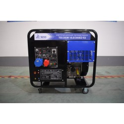 Инверторный дизельный сварочный генератор TSS DGW 10.0/300ED-R3